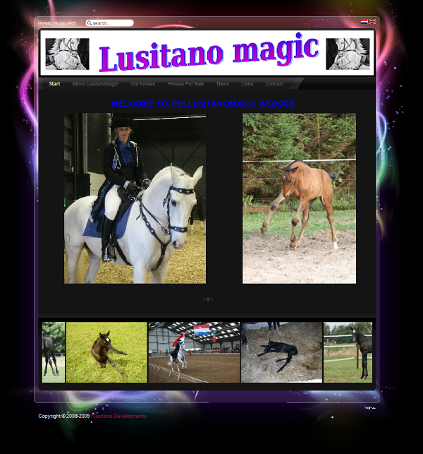 Lusitano Magic